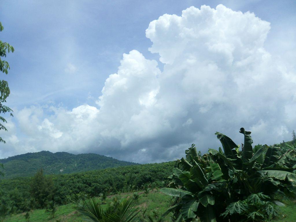 Путешествие психологов в Таиланде